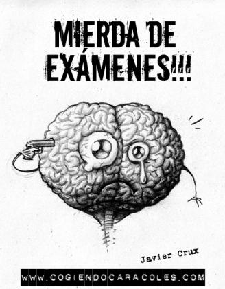 examenes-mierderos.jpg