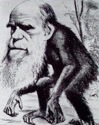 charles_darwin_ape.jpg