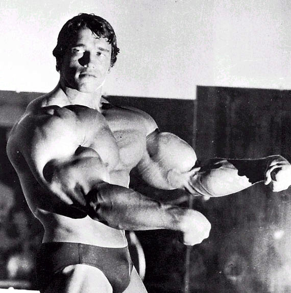 http://yaprouworld.files.wordpress.com/2007/10/arnold-schwarzenegger-big.jpg